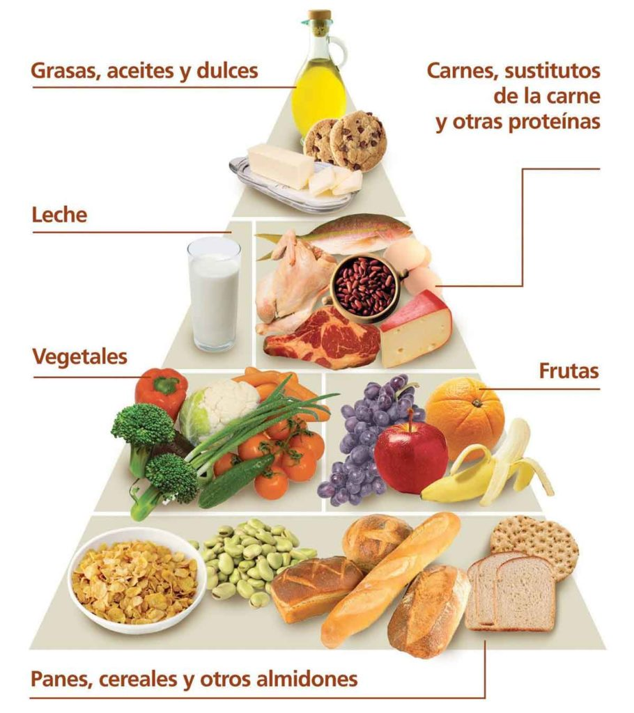Figura 7. Pirámide alimentaria.