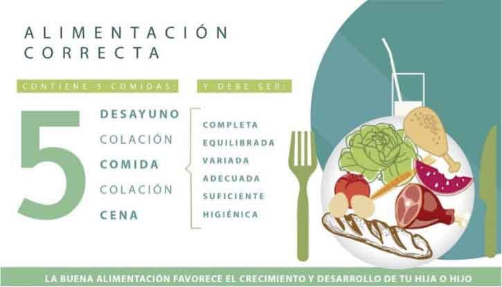 Figura 6. Características de las 5 comidas al día en alimentación infantil.