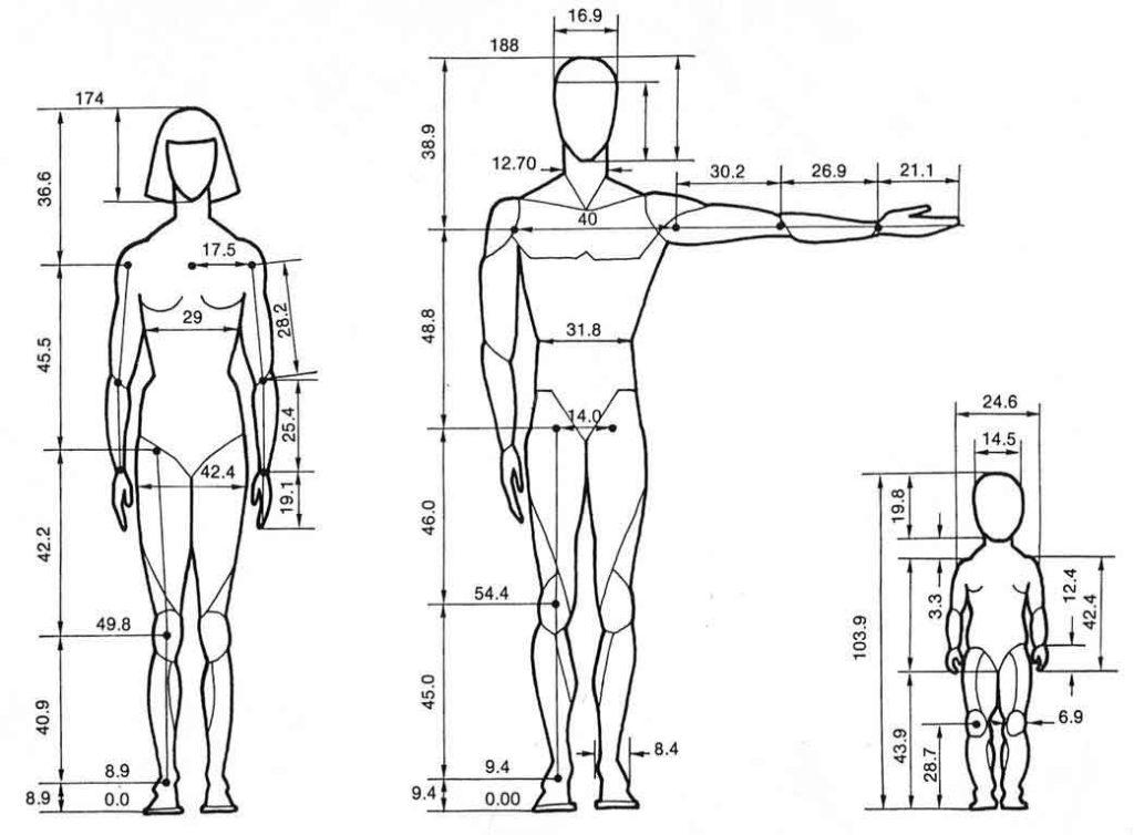 Figura 4. Estudio antropométrico.